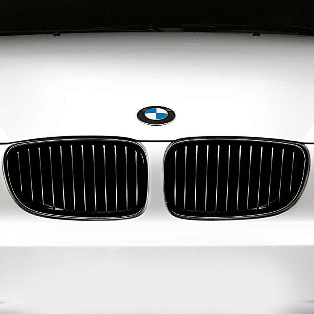 BMW Performance Black Kidney Grille for 1 Series
