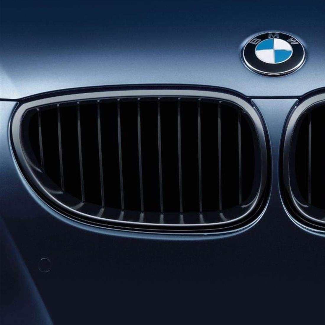 BMW Performance Black Kidney Grille for 5 Series