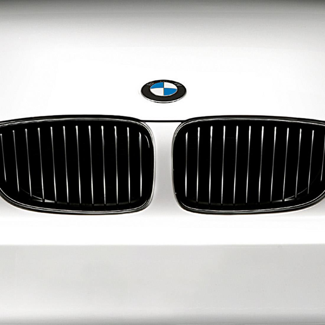 BMW M Performance Black Kidney Grille for 3 Series