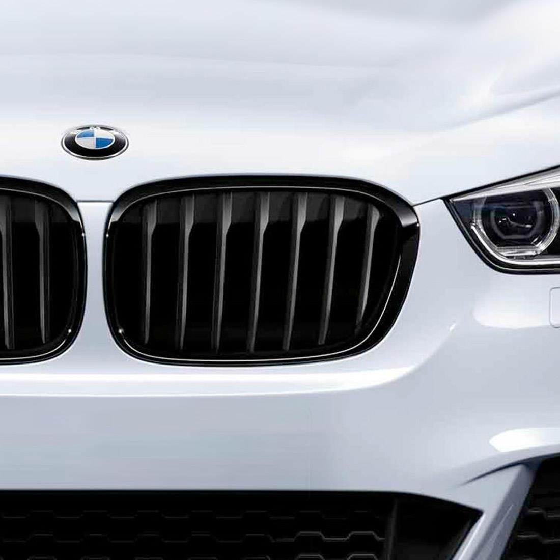 BMW M Performance Black Kidney Grilles for X6