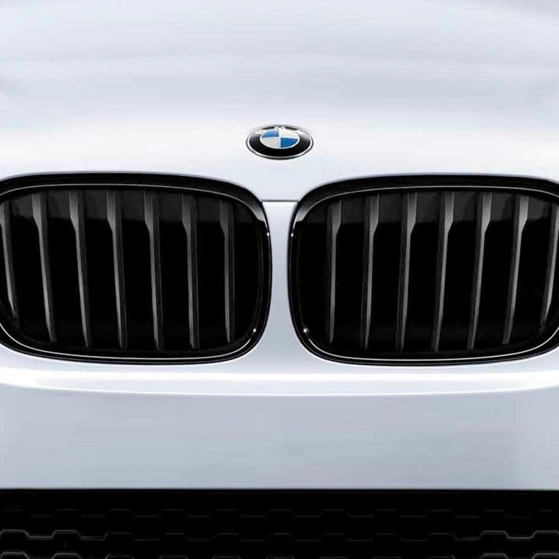 BMW M Performance Black Kidney Grilles for X5