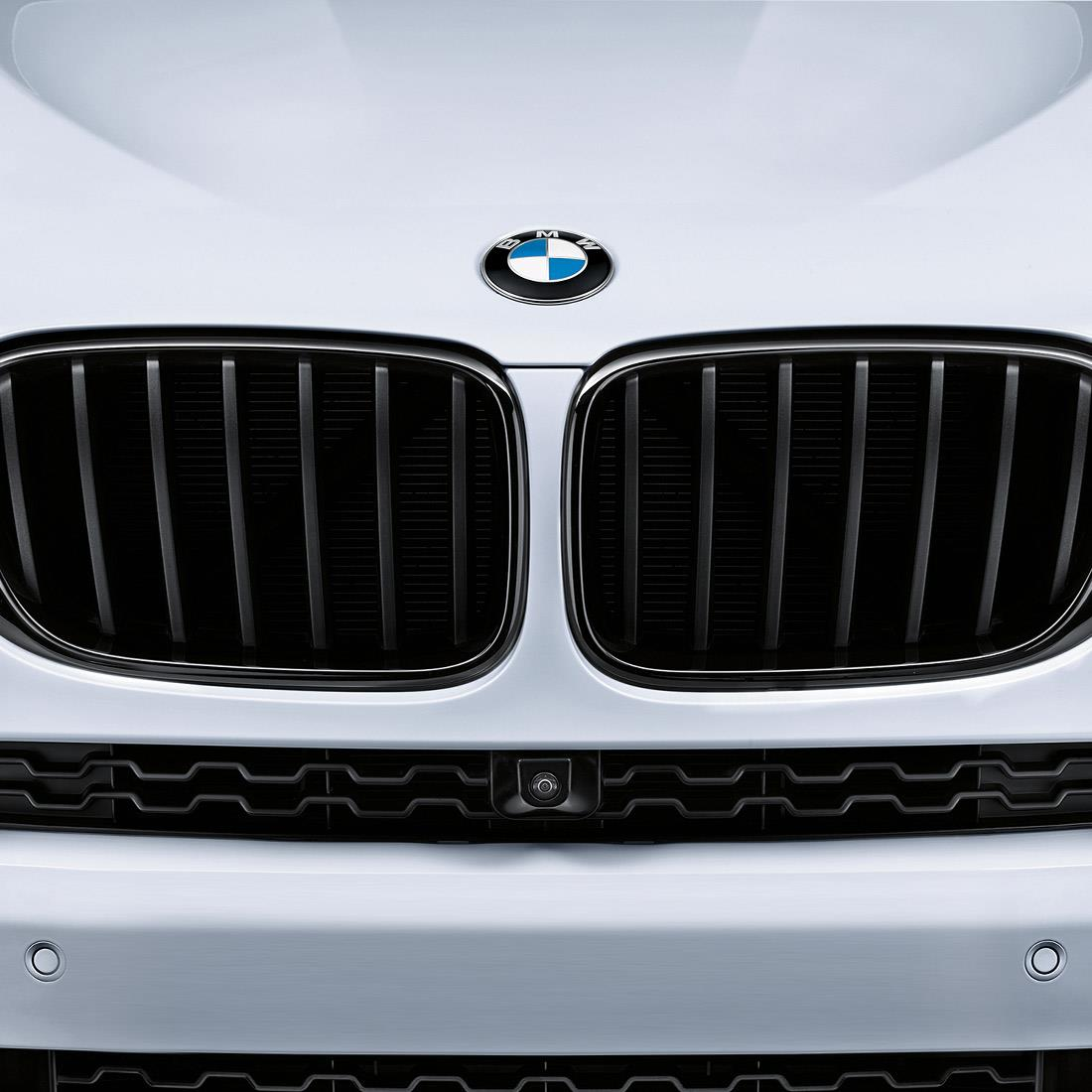 BMW M Performance Black Kidney Grille for X3 / X4