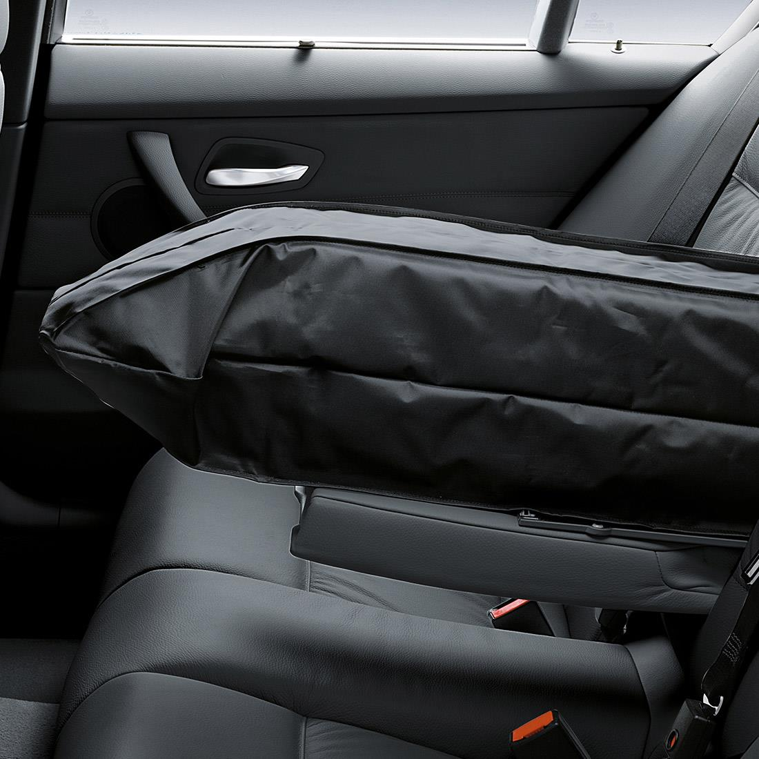 BMW Ski Bag