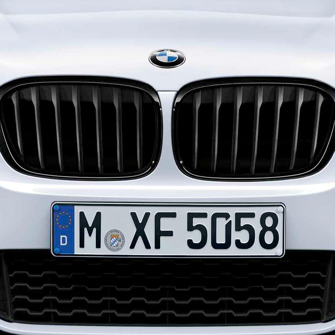 BMW Black Kidney Grill