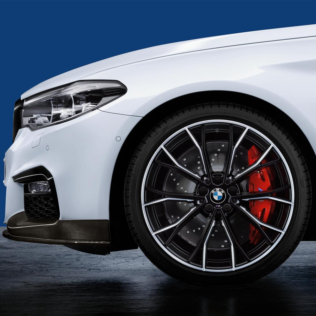 BMW M Performance Brake Disc - Rear