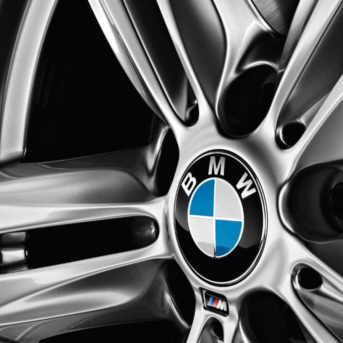 BMW Hub Cap