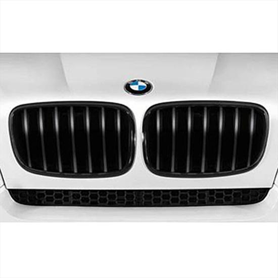 BMW Performance Black Kidney Grille for X6